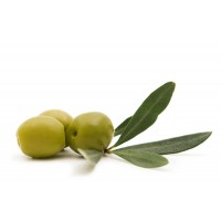 Dehydrated Green Olive Pieces
