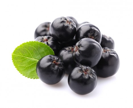 Aronia The Trendy Superfood